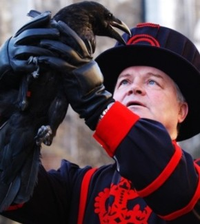 Beefeater - Tower of London