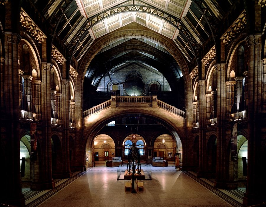 Museo de Historia Natural © The Trustees of the Natural History Museum, London