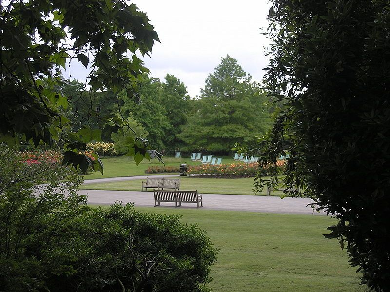 Regent's Park. Wikimedia Commons, autor Deror Avi